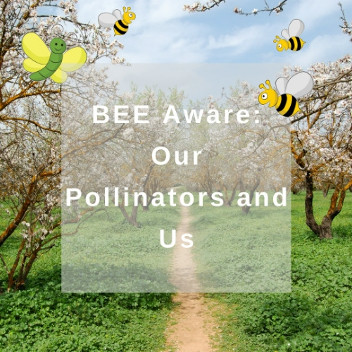 BEE Aware: Our Pollinators and Us!