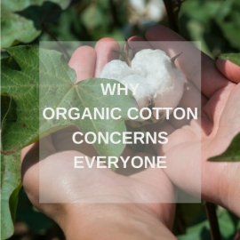 Why organic cotton concerns everyone